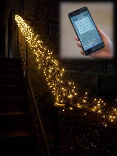 LED-Micro-Büschellichterkette APP gesteuert 6563-870